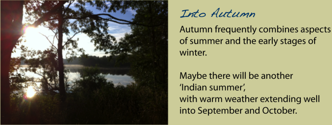 00. Into Autumn-01